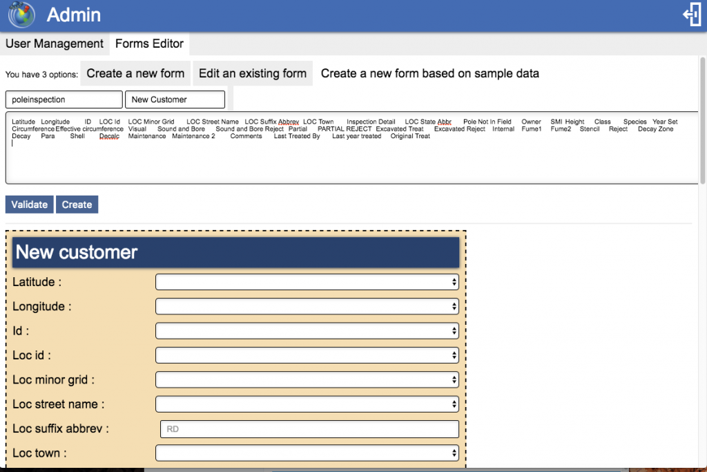Form Editor: Creating a form based on input information.